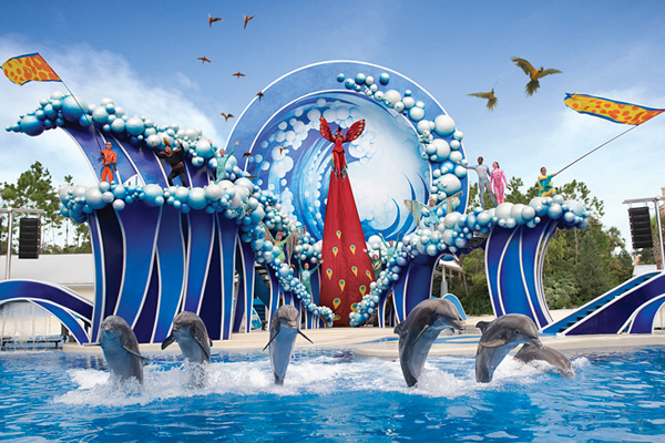 new dolphin days show replacing seaworld orlandos blue horizons
