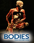 Bodies: The Exhibition - Atlanta, GA