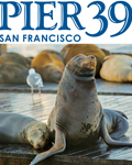 PIER 39 Attraction Pass