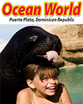 Sea Lion Encounter By Ocean World Adventure Park