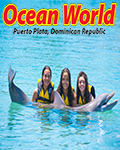 Dolphin Encounter by Ocean World Adventure Park