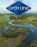 Everglades and Miami Adventure by Gray Line Orlando
