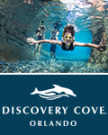 Discovery Cove: Day Resort Package with SeaWorld and Aquatica