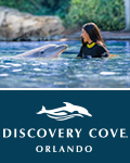 Discovery Cove: Dolphin Swim Package with SeaWorld and Aquatica