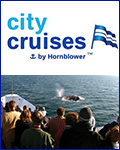 Hornblower San Diego - Whale Watching Cruise